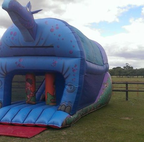 essex-bouncy-castles-08