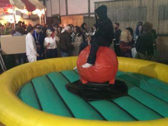 essex-bouncy-castles-24